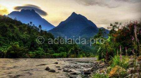 Особенности отдыха в Борнео