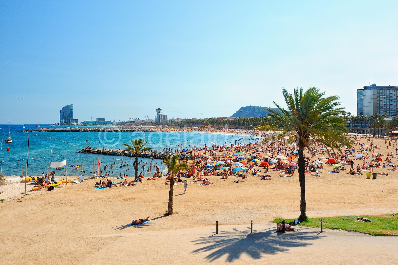 Отели у моря в Барселоне
