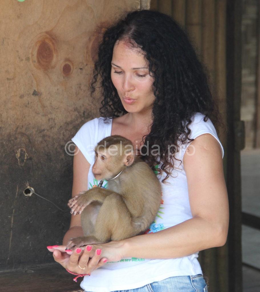 А вот милых и пушистых обезьянок опасаться надо бы
