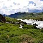 Отпуск на Алтае