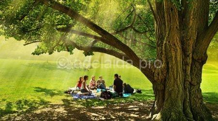 Как комфортно отдохнуть на природе