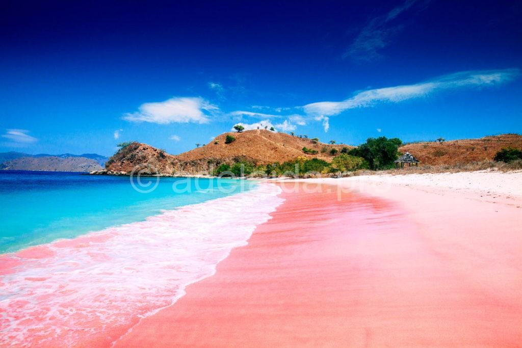 Розовый песчаный пляж, Острова Харбор, Багамы, Багамские острова
