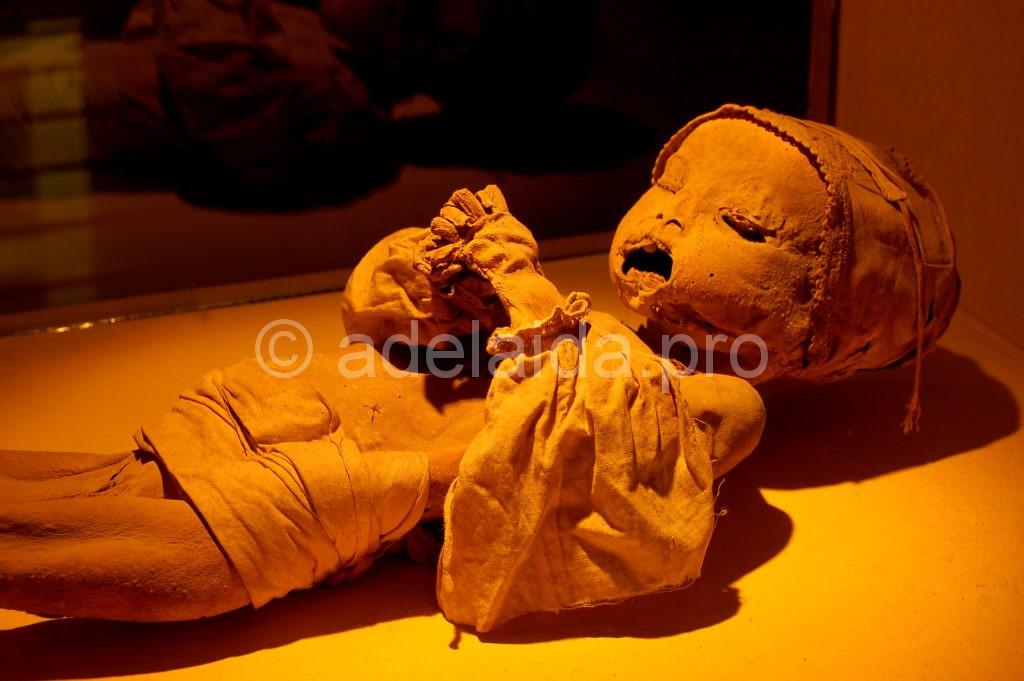 Официально Музей мумий начал работать в 1969 году