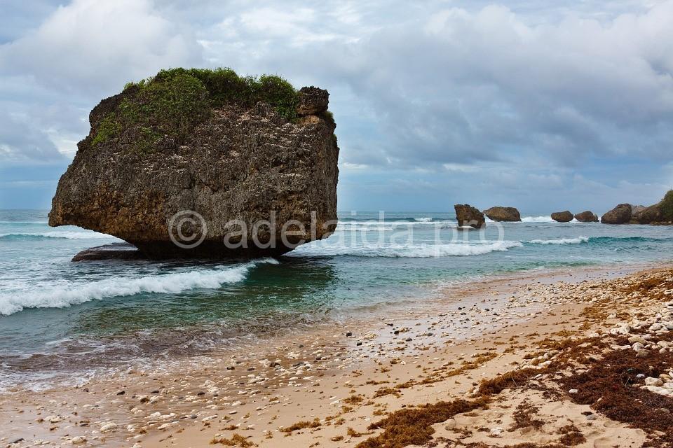 Восточный берег Барбадоса омывает Атлантический океан