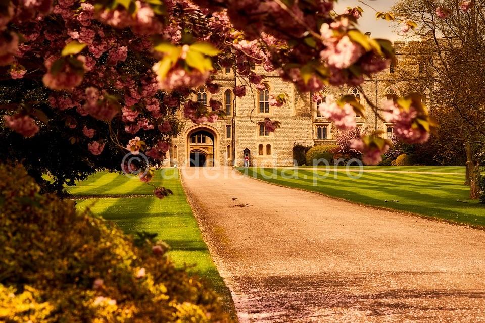 Английская резиденция королевы - Виндзорский замок