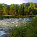 Отдых на природе Алтайского края