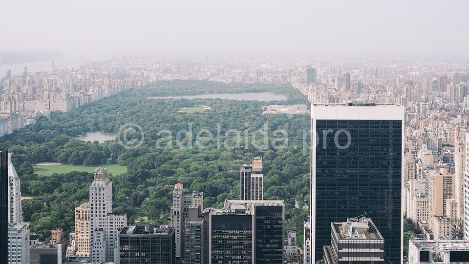 Центральный парк Нью-Йорка, самый популярный в США