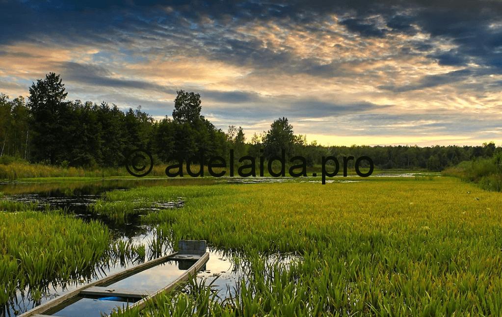 Природные достопримечательности Беларуси