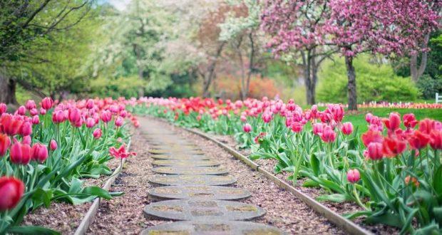 Где лучше отдыхать весной